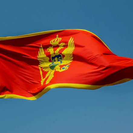 Small Country, Big Government: The Case of Montenegro