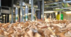 The UK does not need to rethink its strategy on Biomass