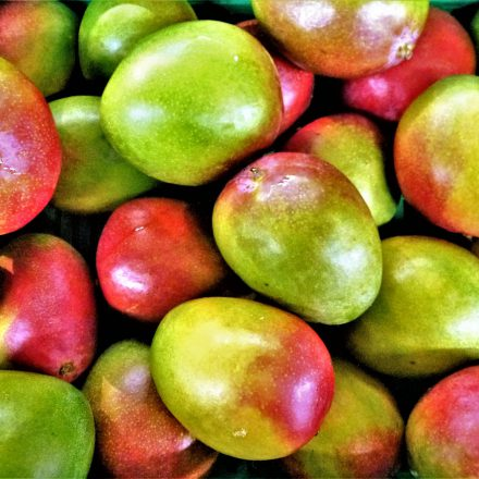 The Venezuelan Mango Dilemma: Ethical Consumption for the Ideological Capitalist